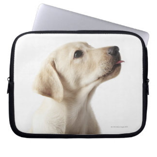 Blond Labrador puppy sticking out tongue Computer Sleeve