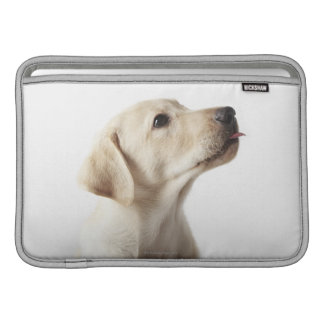 Blond Labrador puppy sticking out tongue MacBook Air Sleeve