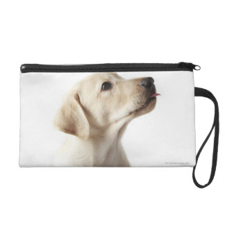 Blond Labrador puppy sticking out tongue Wristlet Purse