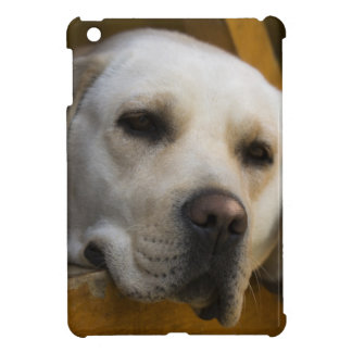 Blond Labrador retriever, Patagonia, Chile Cover For The iPad Mini