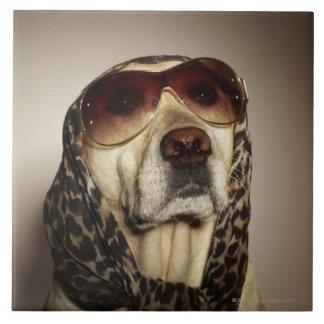 Blond Labrador Retriever wearing sun glasses Tile