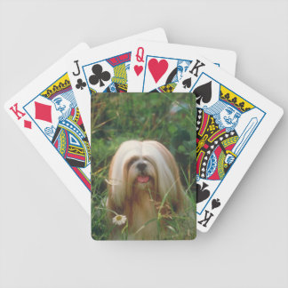 Blond Lhasa Apso Dog Playing Cards