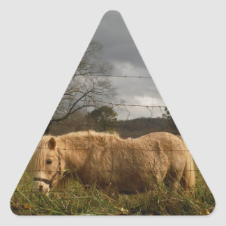 Blond Miniature Pony / Horse Triangle Sticker