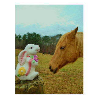 Blond Yellow horse & Easter Bunny Postcard