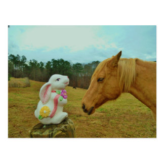 Blond Yellow horse Easter Bunny Postcard