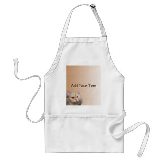 Blonde Cat with Topaz Eyes on Cinnamon Apron