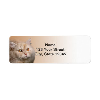 Blonde Cat with Topaz Eyes on Cinnamon Border Label