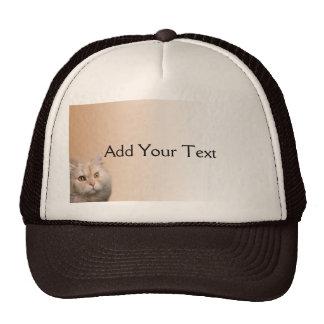 Blonde Cat with Topaz Eyes on Cinnamon Border Trucker Hat