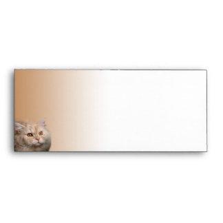 Blonde Cat with Topaz Eyes on Cinnamon Envelope