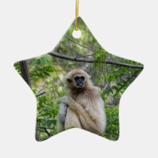 Blonde Gibbon Monkey - Hylobates lar Ceramic Ornament