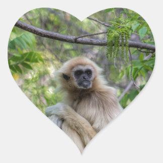 Blonde Gibbon Monkey - Hylobates lar Heart Sticker