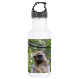 Blonde Gibbon Monkey - Hylobates lar Water Bottle