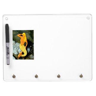 blonde lookout mermaid Dry-Erase board