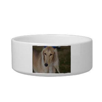Blonde Saluki Dog Bowl
