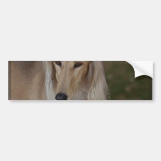 Blonde Saluki Dog Bumper Sticker