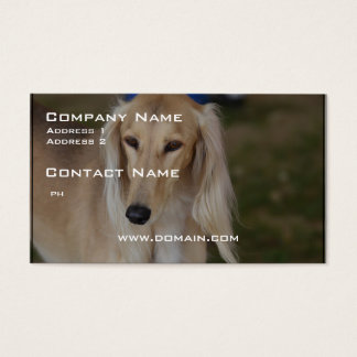 Blonde Saluki Dog Business Card