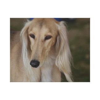 Blonde Saluki Dog Canvas Print