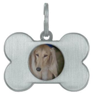 Blonde Saluki Dog Pet ID Tag