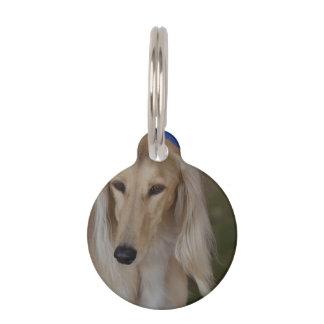 Blonde Saluki Dog Pet Tag