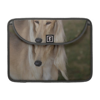 Blonde Saluki Dog Sleeve For MacBook Pro