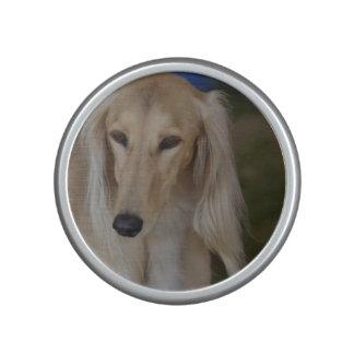 Blonde Saluki Dog Speaker