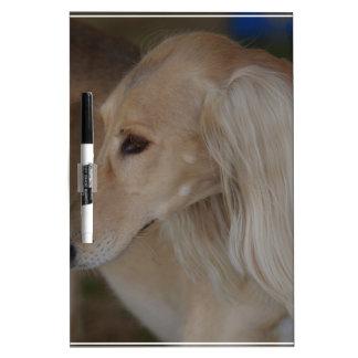 Blonde Saluki Dry-Erase Board