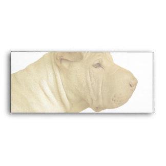 Blonde Shar Pei Portrait on White Envelope