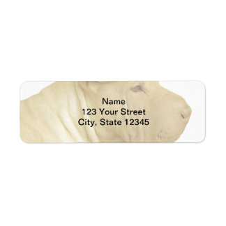 Blonde Shar Pei Portrait on White Return Address Labels