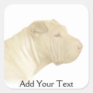 Blonde Shar Pei Portrait on White Square Sticker