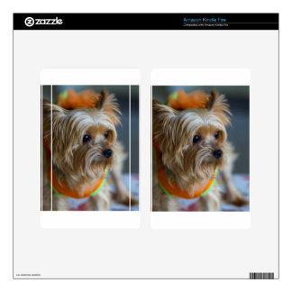 Blonde Yorkshire Terrier Decals For Kindle Fire