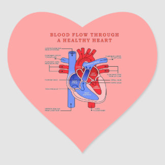 BLOOD FLOW HEART STICKER