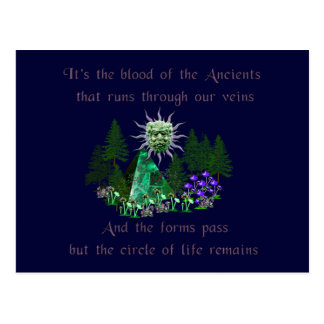 Blood of the Ancients Postcard