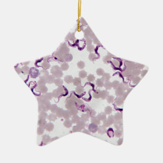 Blood Parasite Trypanosoma Double-Sided Star Ceramic Christmas Ornament