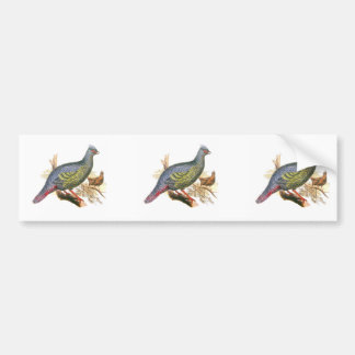 Blood Pheasant Bumper Stickers