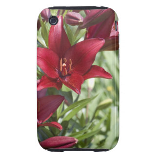 Blood Red Daylily iPhone 3 Tough Case
