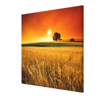 Blood-Red Sunset Canvas Print
