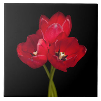 Blood Red Tulips on Black Background Customized Tile