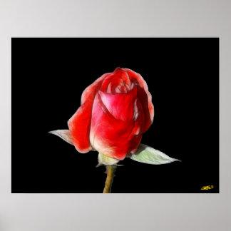 Blood rose poster