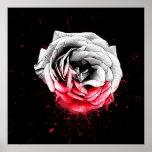 Blood Rose - Poster