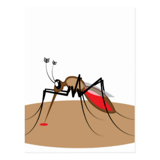 Blood sucking Insect Postcard