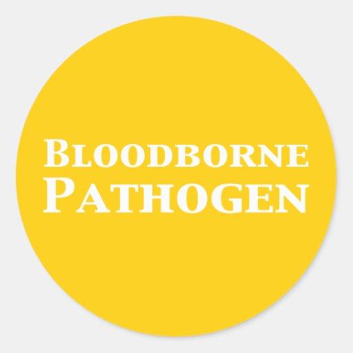 Bloodborne Pathogen Gifts Classic Round Sticker