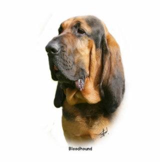 Bloodhound 9Y404D-135 Cutout