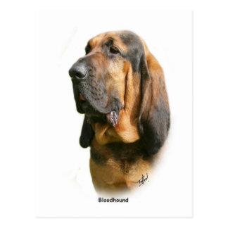 Bloodhound 9Y404D-135 Postcard