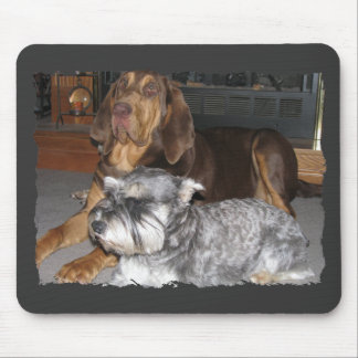 Bloodhound and Miniature schnauzer Mousepad