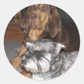 Bloodhound and Miniature Schnauzer Stickers