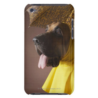 Bloodhound dog. iPod Case-Mate case