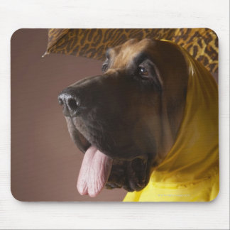 Bloodhound dog. mouse pad