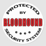 Bloodhound Dog Security Stickers