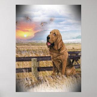 Bloodhound Dreamer Poster