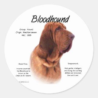 Bloodhound History Design Round Stickers